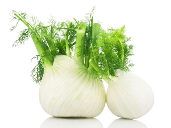 10 Amazing Herbs That Strengthen Your Digestion; Fennel